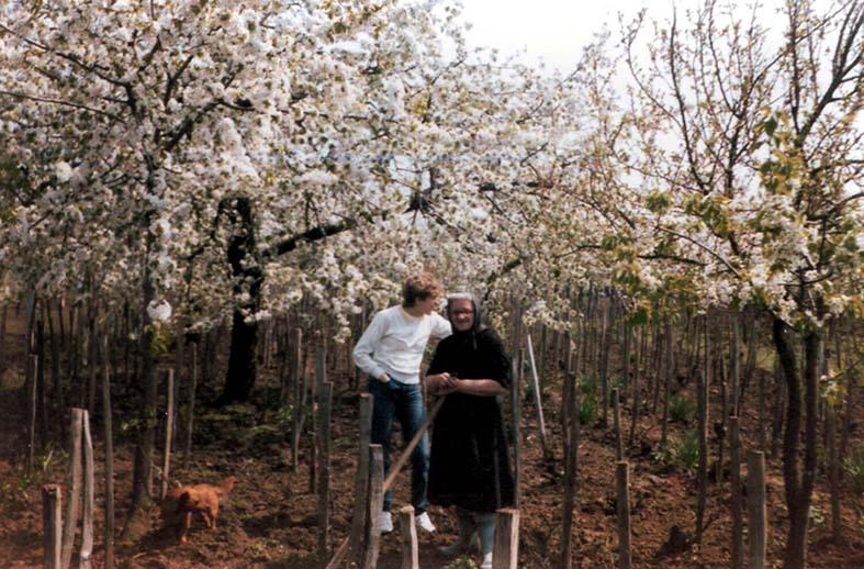 Blühende Kirschbäume in der Neugass - Elisabeth Jost und Waltraud Mathis
