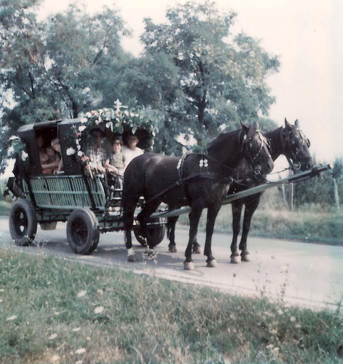 Fahrt nach Radna - Fizigoi Karlsgass