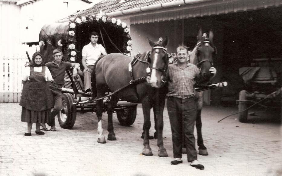 Radna-Wagen Fizigoi